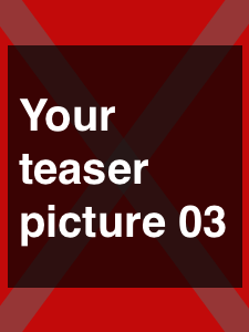 Your teaser picture
